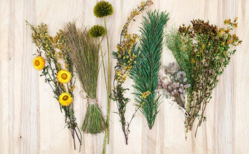 Sausų gėlių kompozicijos kaip ir gėlių siena – tikras išbandymas floristui