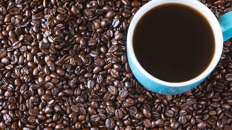 Botanikoje pateikiama kavos klasifikacija: arabika, robusta, liberika